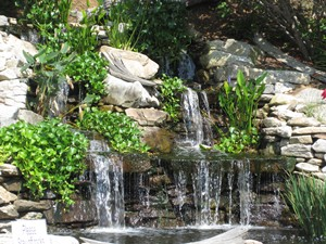 Water features | Asheville | Hendersonville